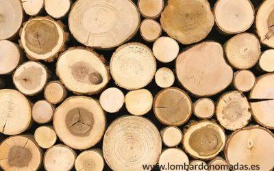 ¿Por qué usamos madera de Teca?